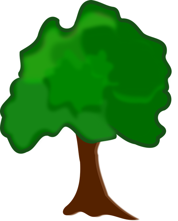 Clip Art, Flora, Nature, Plant, Tree