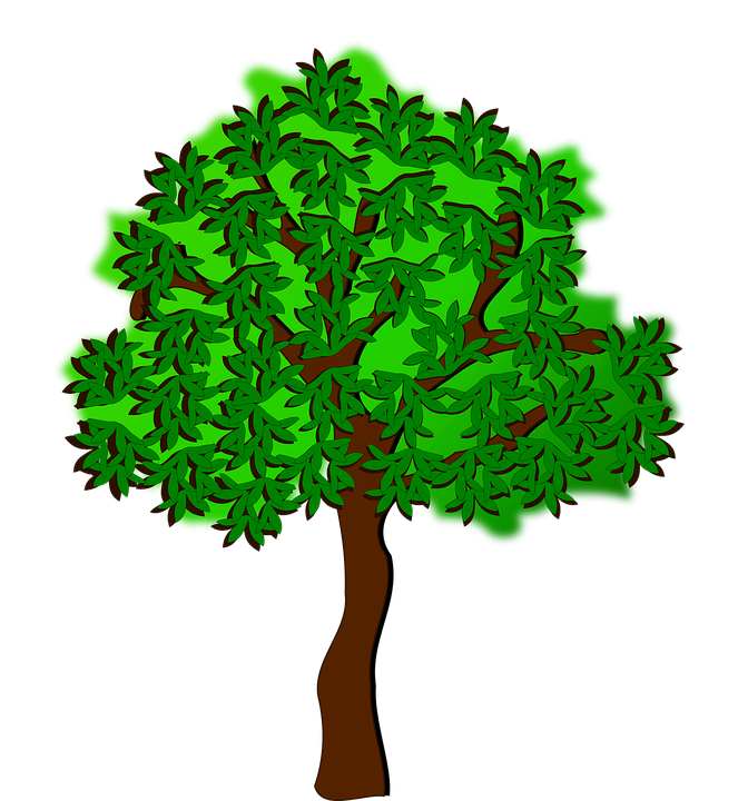 Clip Art, Flora, Nature, Plant, Tree