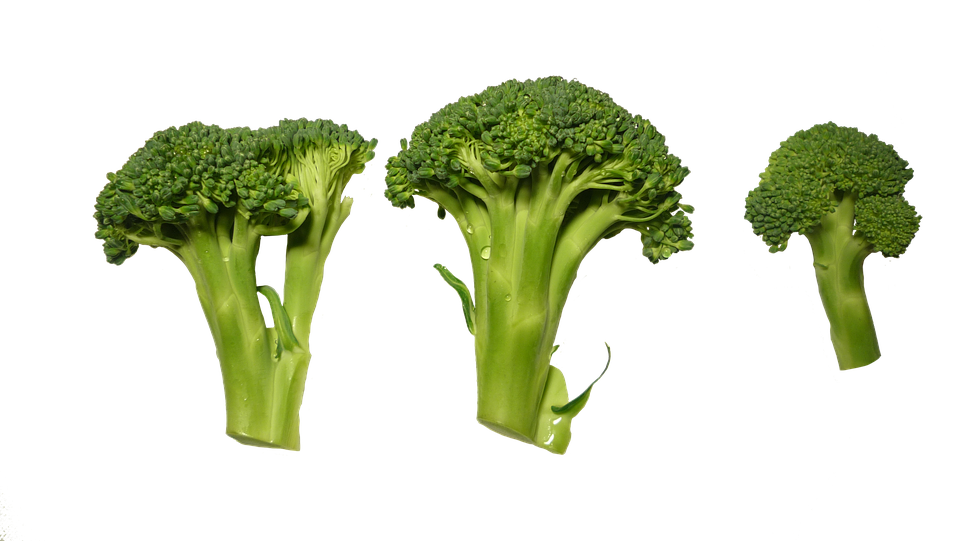 Broccoli, Clippings, Vegetables