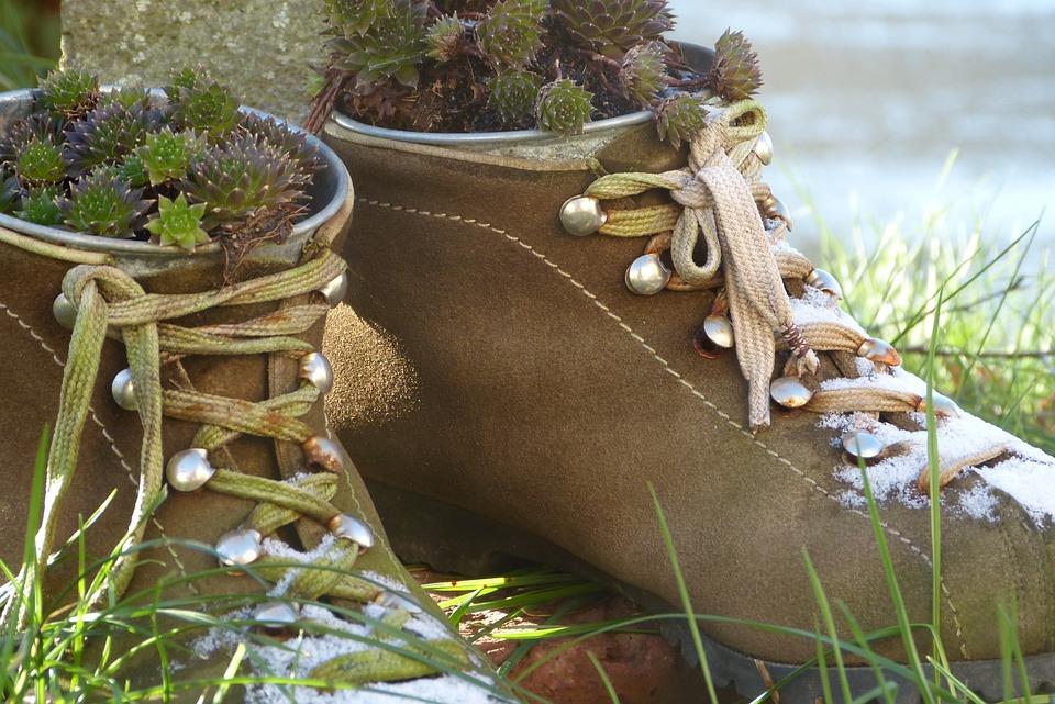 Shoes, Planted, Decoration, Hiking Shoes, Close