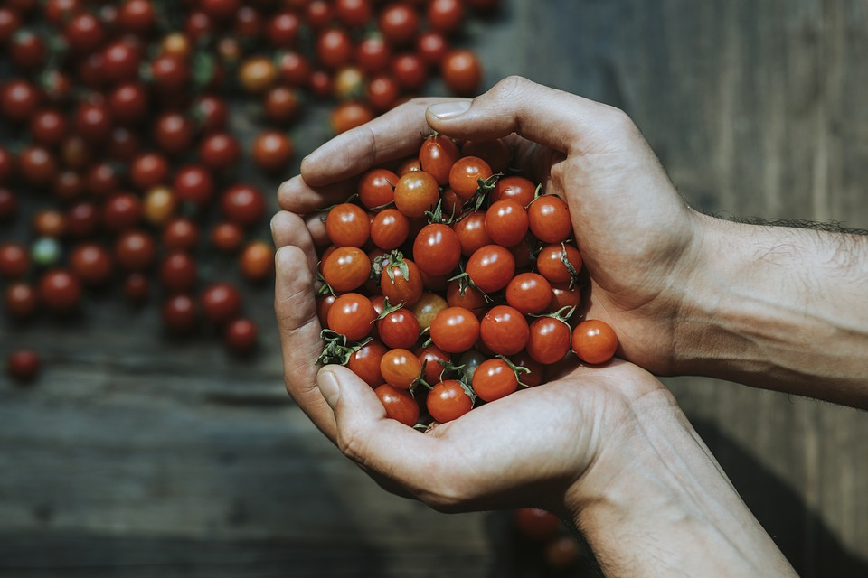 Aerial, Background, Cherry Tomato, Closeup, Cooking