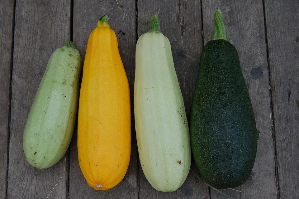 Zucchini, Vegetable, Closeup, Vegetarianism