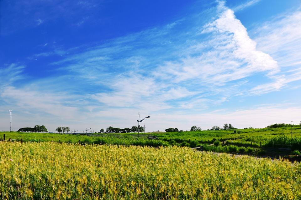 Seoul, Cloud, Sky, Republic Of Korea, Scenery