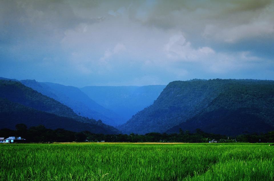 Landscape, Sylhet, Nature, Hills, Green, Cloud, Sky