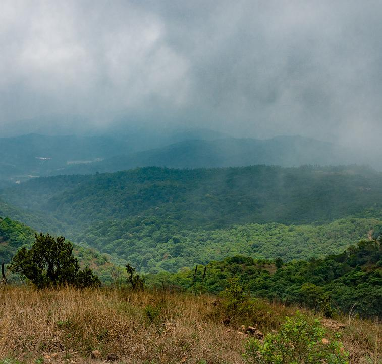 Landscape, Mountain, Nature, Fog, Travel, Grass, Cloud