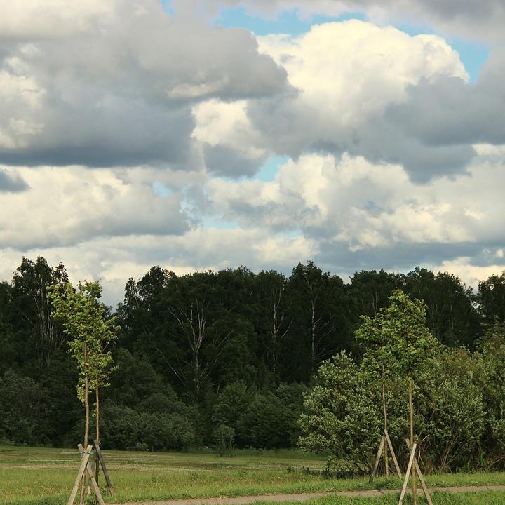 Clouds, Antonina Volcano, Forest, Nature, Summer