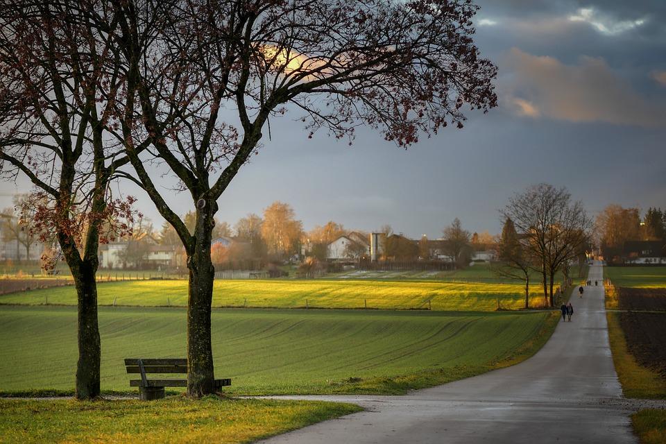 Rest, Clouds, Tree, Bank, Meadow, Fields, Away