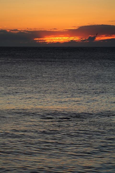 Sea, Sun, Beach, Ocean, Sky, Landscape, Clouds, Nature