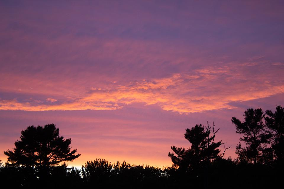 Sunset, Pink, Yellow, Clouds, Cloudscape, Trees, Nature