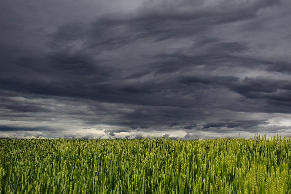 Clouds, Summer, Storm, Clouds Form, Dark Clouds