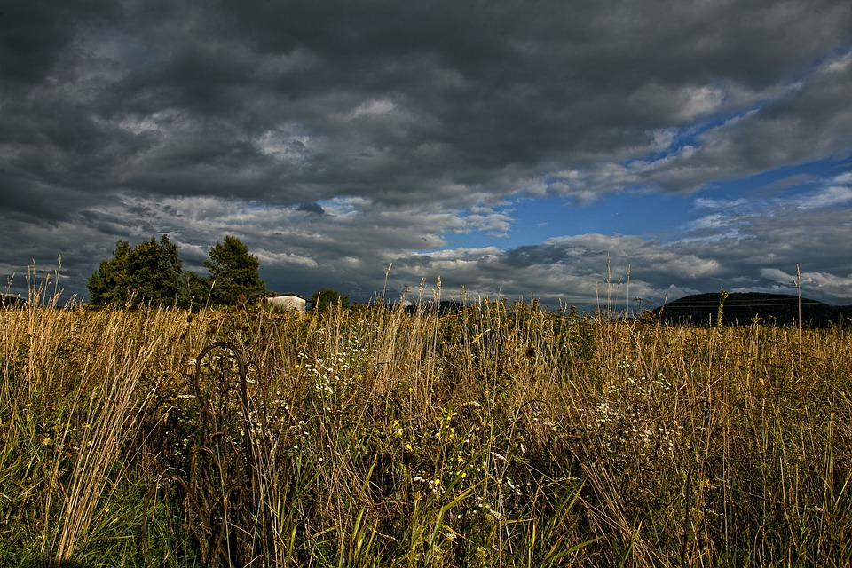 Landscape, Gewitterstimmung, Clouds, Grass, High Grass
