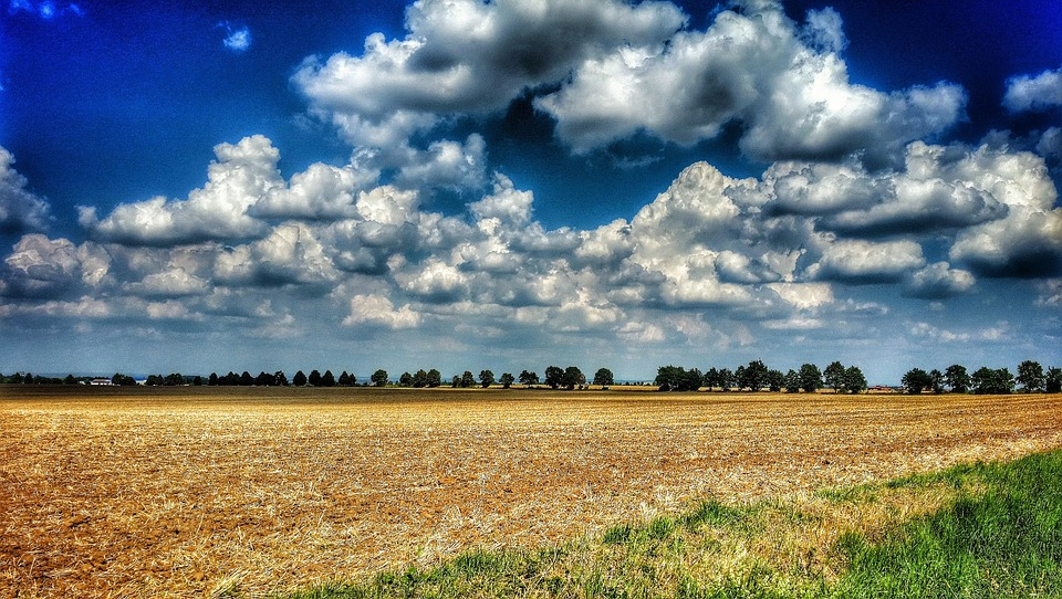 Landscape, Field, Sky, Clouds, Horizon, View, Scenery