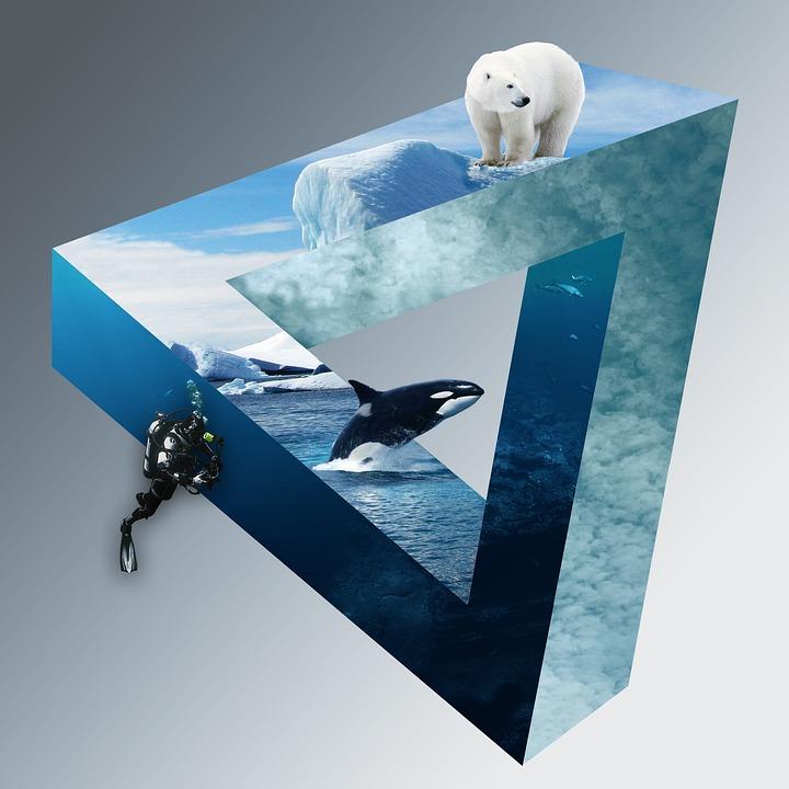 Polar Bear, Divers, Wal, Orca, Icebergs, Clouds