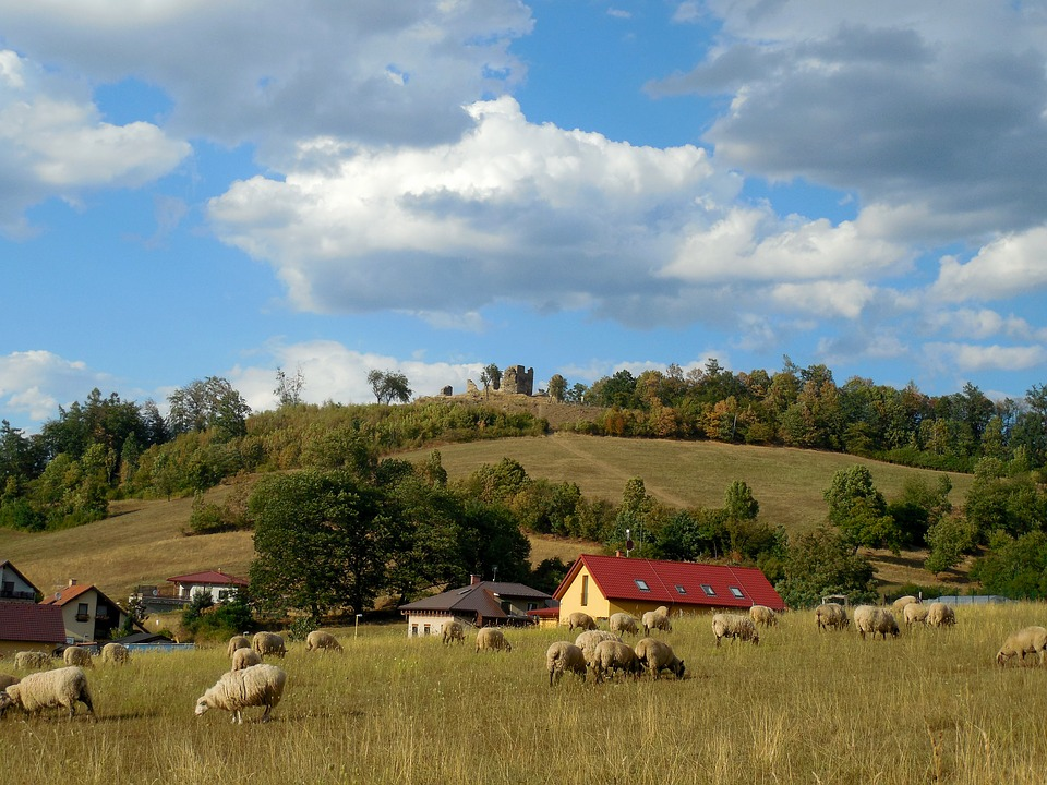 Landscape, Sheep, Hill, Countryside, Nature, Clouds