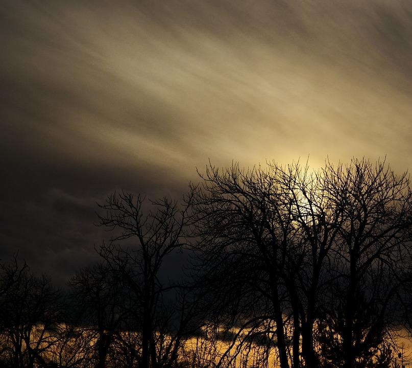 Landscape, Trees, Clouds
