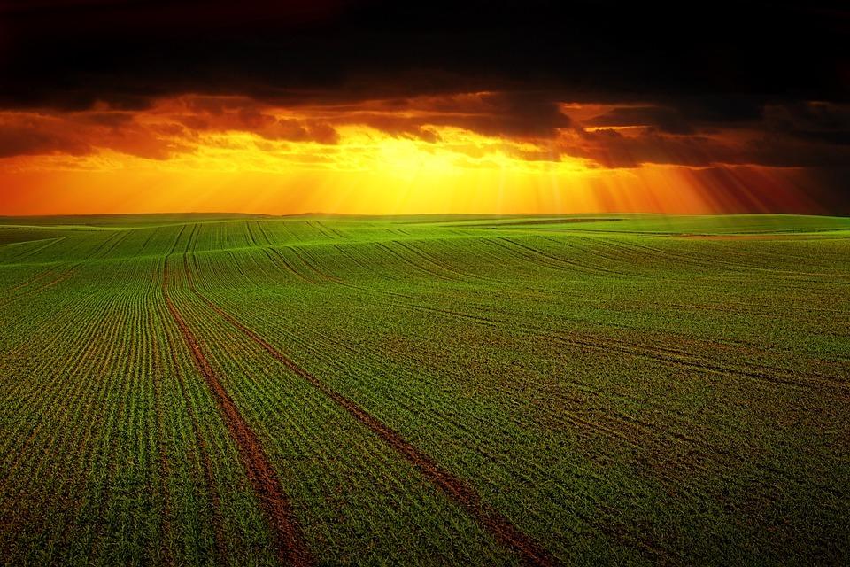 Field, Landscape, Nature, Panorama, Clouds