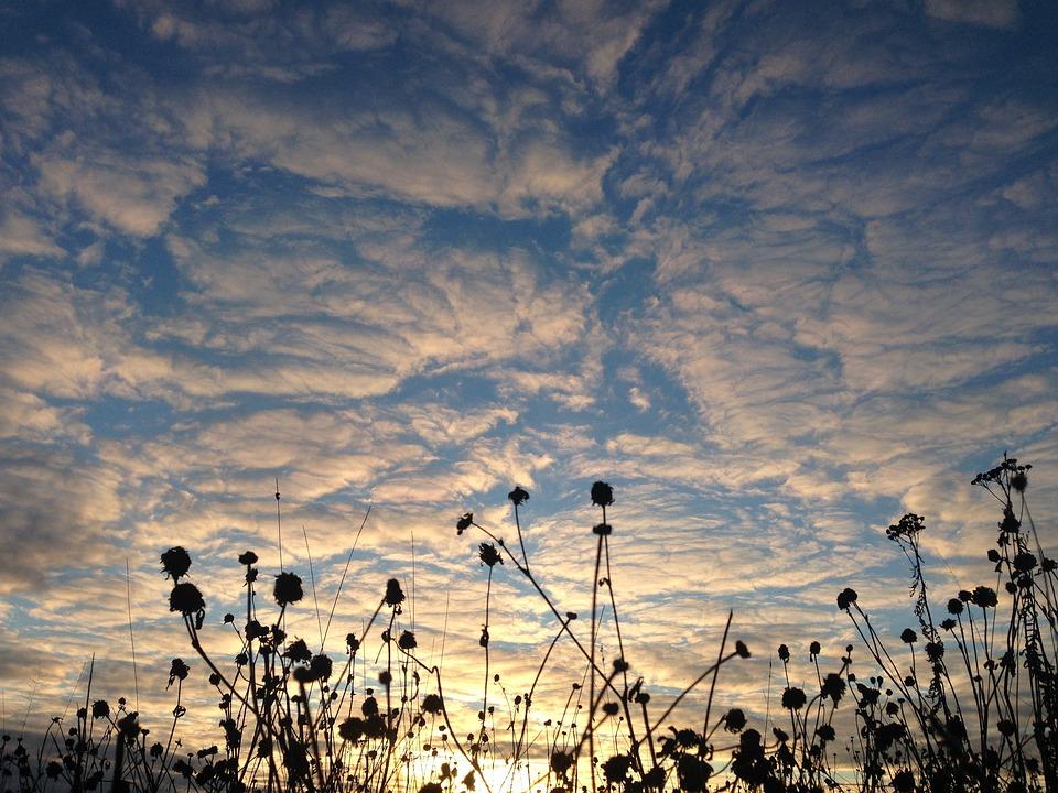 Sky, Sunset, Evening Sky, Clouds, Pink, Sun, Twilight