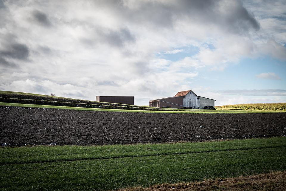 Scale, Barn, Fields, Clouds, Agriculture, Hut