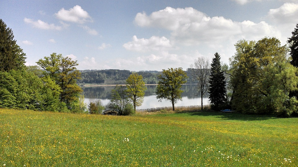 Lake, Landscape, Trees, Natural, Scenic, Sky, Clouds
