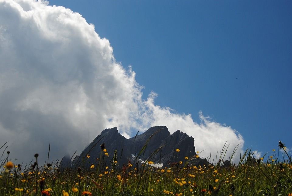 Mountain, Dolomites, Sky, Flowers, Clouds, Prato