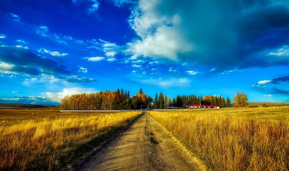 Ranch, Farm, Sky, Clouds, Landscape, Scenic, Plants