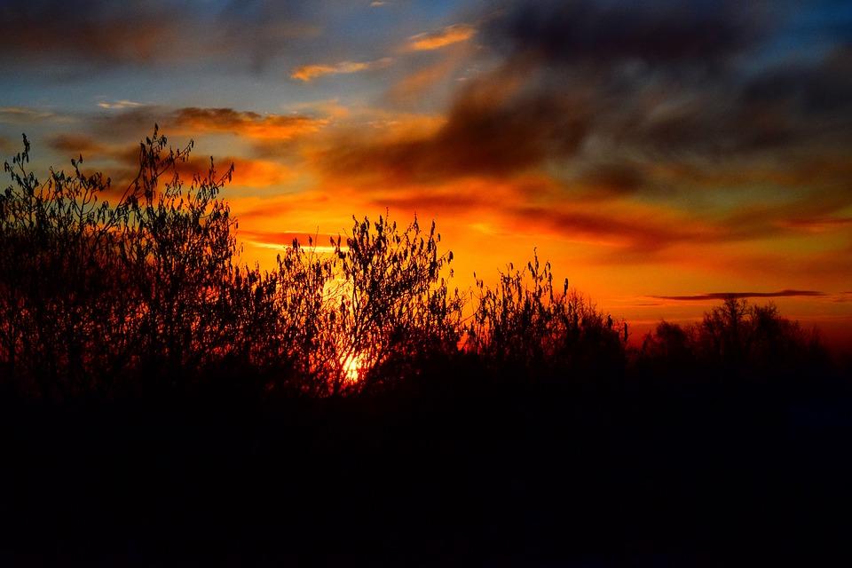 Sunrise, Trees, Silhouettes, Sky, Clouds, Sunset, Dusk