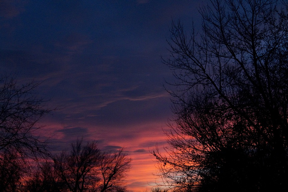 Sunset, Colors, Brilliant, Trees, Sky, Clouds, Oklahoma