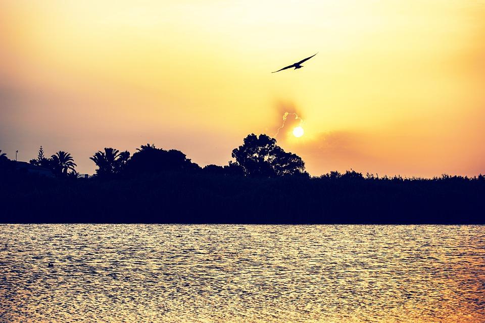 Sunset, Laguna, Sun, Sky, Clouds