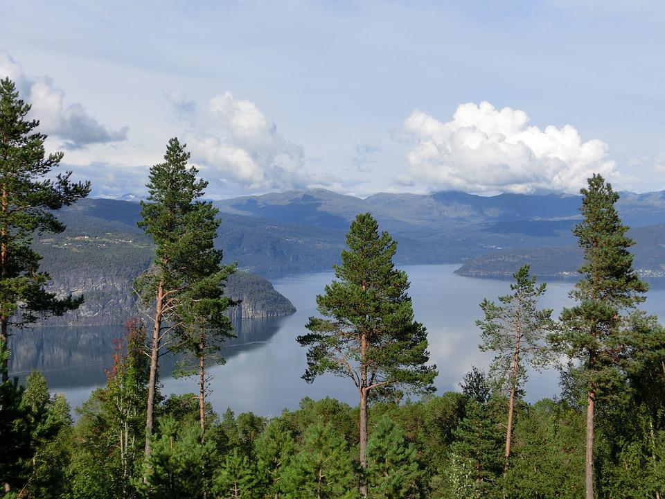 Fjord, View, Trees, Clouds, Sky, Top, Nature, Landscape