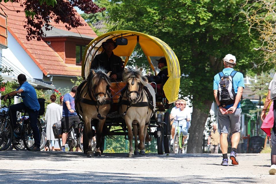 Hiddensee, Horse Drawn Carriage, Horse, Coach