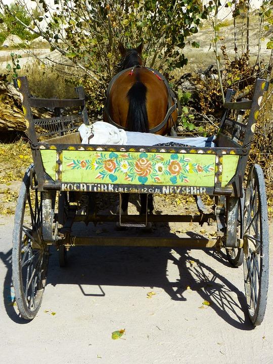 Coach, Horse Drawn Carriage, Horse, Wagon, Dare