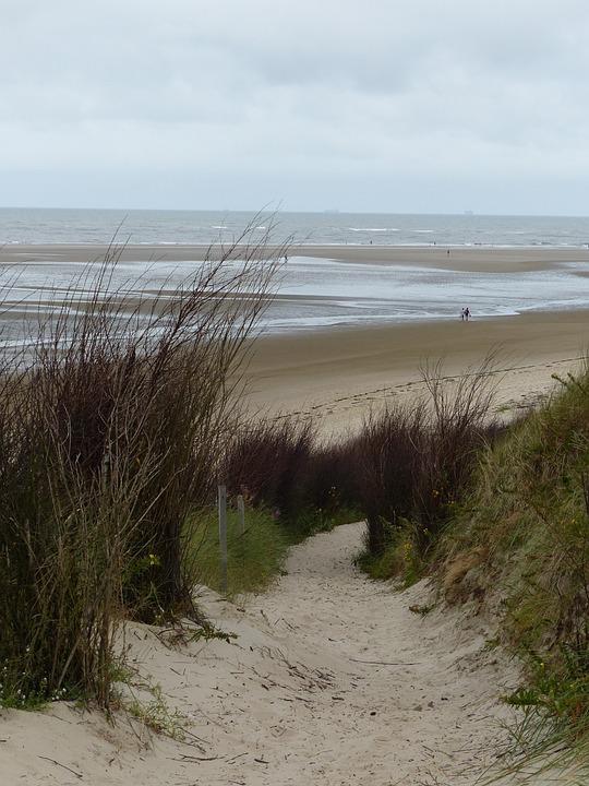 Island, East Frisia, Coast, Sea, Breeze, Beach, Horizon