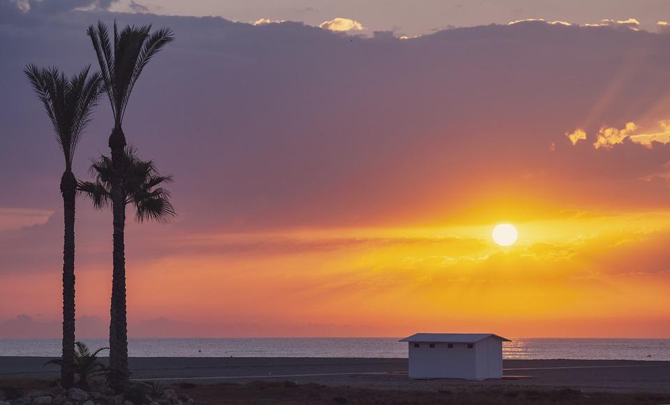 Beach, Palm Tree, Sunset, Sea, Ocean, Coast, Dusk