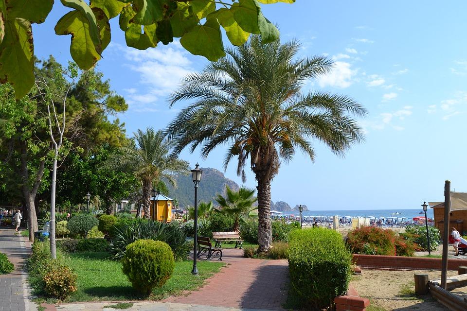 Turkey, Alanya, Palm, Park, Beach, Coast