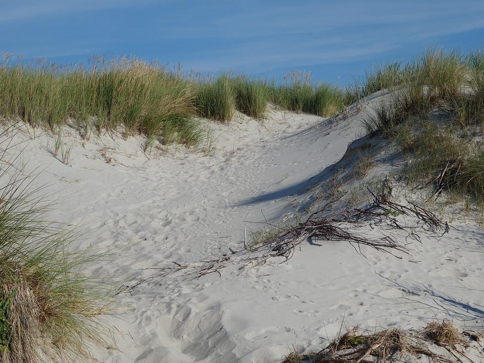 Sand Dunes, Dune, Sand, Dune Grass, Coast, Baltic Sea