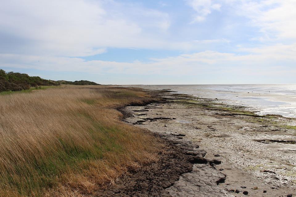 Ameland, Het Oerd, Watts, Coast, Sea