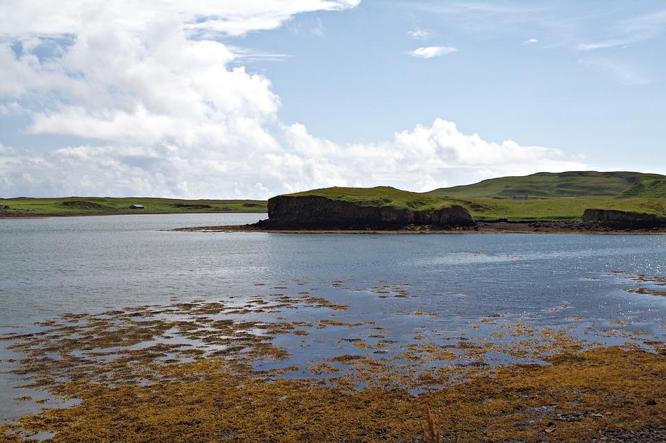 Bay, Coast, Island, Coastline, Sea, Water, Scenery