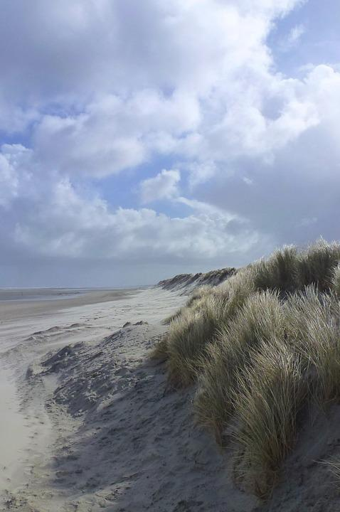 Sea, Beach, Sky, Clouds, Horizon, Holiday, Coastline