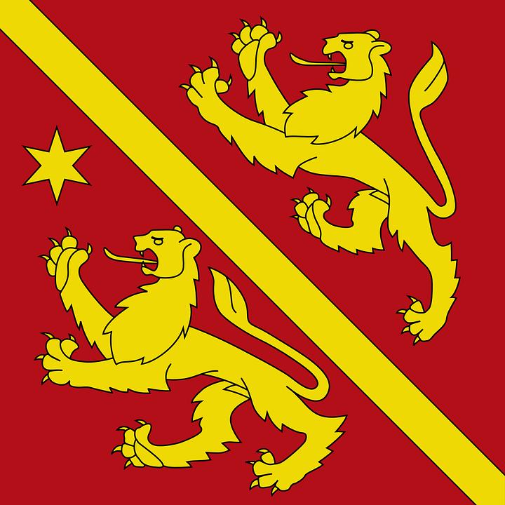 Coat, Arms, Dragon, Animal, Red, Yellow