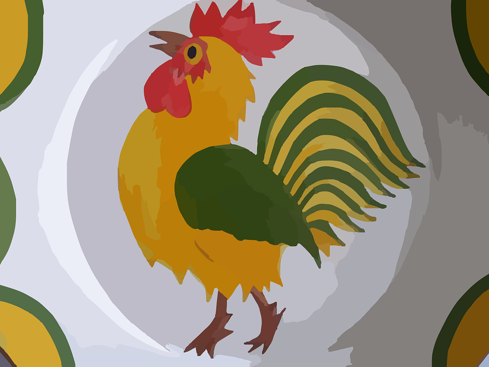 Rooster, Bird, Chicken, Poultry, Cockerel, Meat