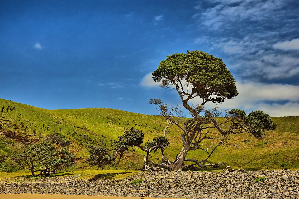 South Africa, Coffee Bay, Hole In The Wall, Blue Sky