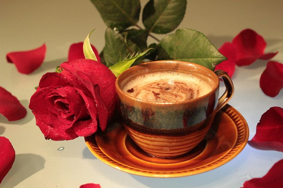 Rose, Coffee, Cup, Foam, Drink, Petals