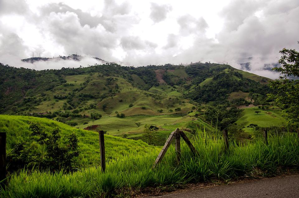 Colombia, Coffee Zone, Mountains, Landscape, Nature