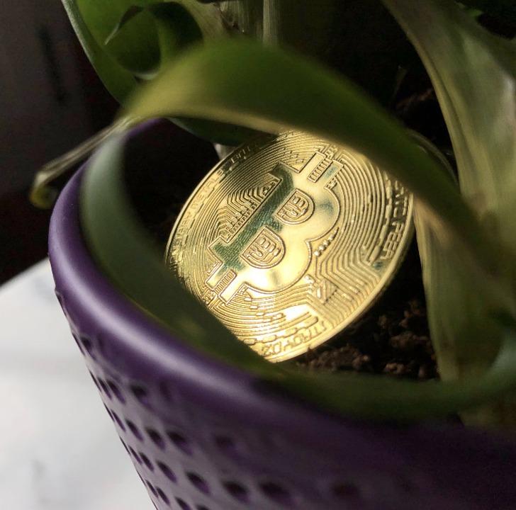 Bitcoin, Money, Cryptocurrency, Coin, Blockchain