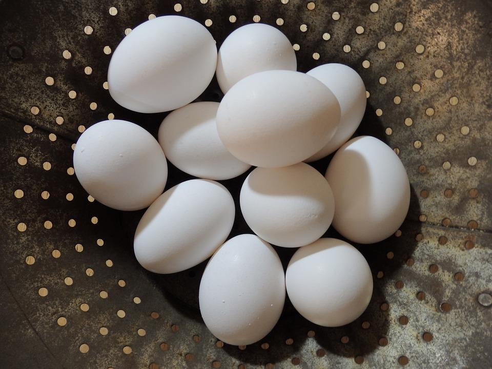 Eggs, Colander, Rusty, Farm