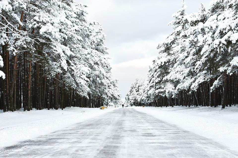 Way, Winter, Snow Landscape, Travel, Forest, Snow, Cold
