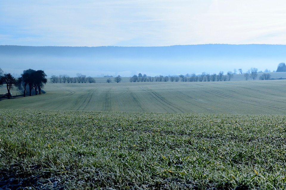 Landscape, Frozen, Hoarfrost, Arable, Frost, Cold