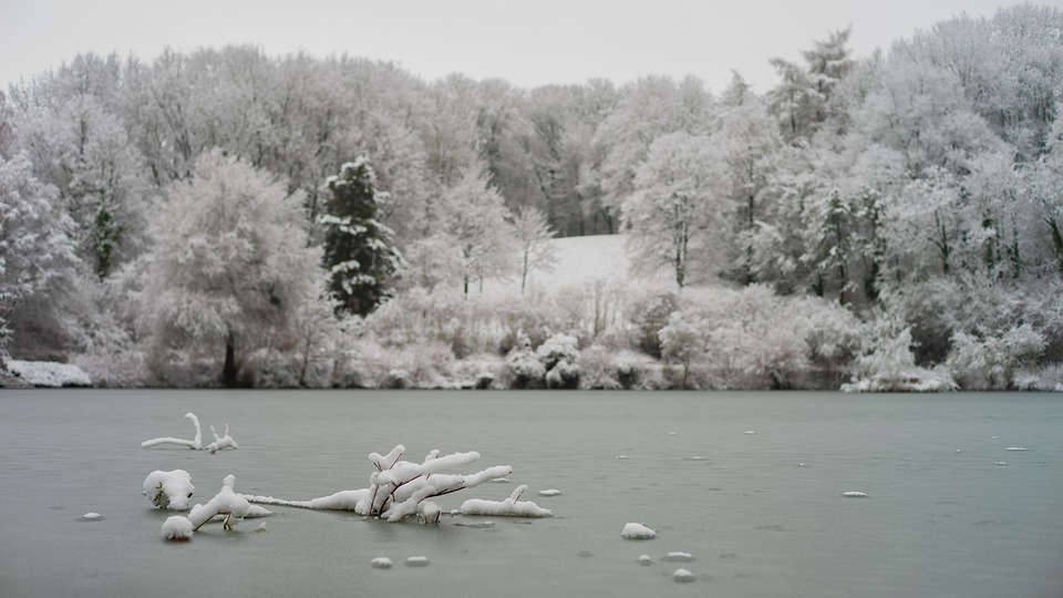 Winter, Snow, Frost, Lake, Water, Cold, Landscape