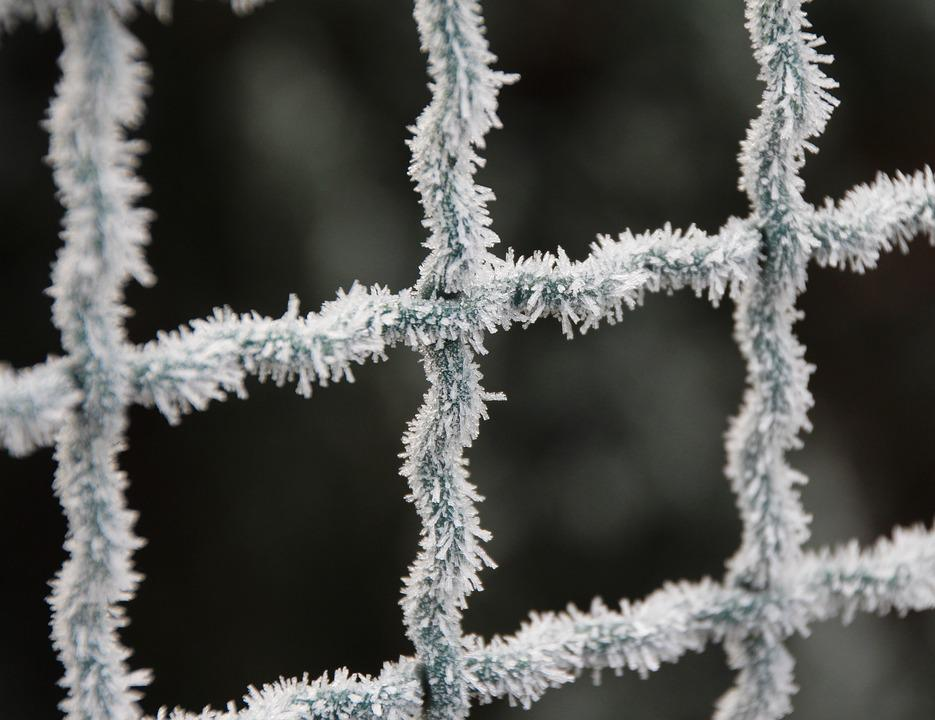 Frost, Fence, Winter, Icy, Cold, Frozen, Wire Mesh
