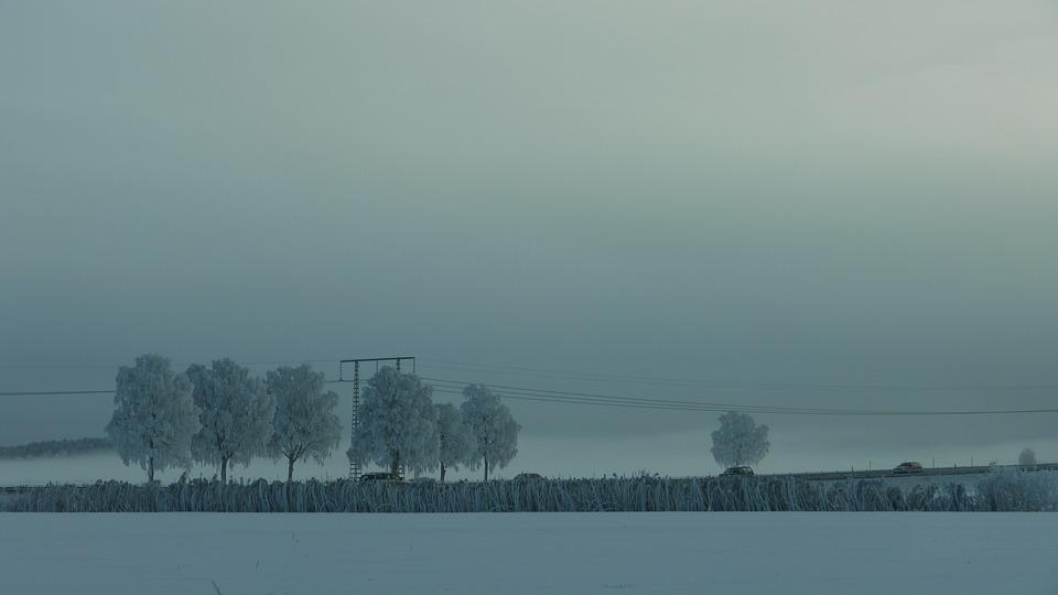 Winter, Mist, Cold, Landscapes, Cooling, Snow, Nature